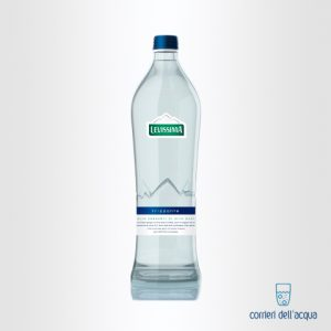 Acqua Frizzante Levissima 0,75 Litri Bottiglia in Vetro