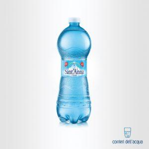 Acqua Frizzante Sant'Anna Vinadio 1 Litro Bottiglia in Plastica