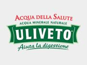 Acqua Leggermente Frizzante Uliveto 1,5 Litri Bottiglia di Plastica
