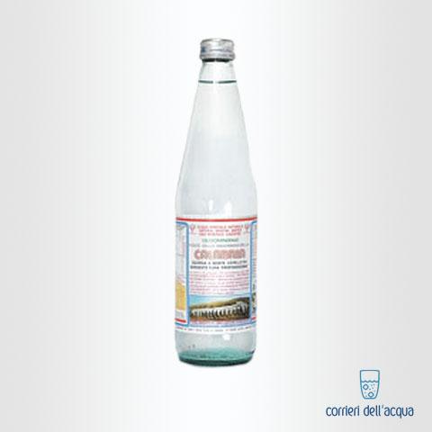 Acqua Frizzante Calabria 046 Litri Bottiglia di Vetro