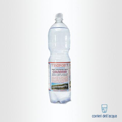 Acqua Frizzante Calabria 15 Litri Bottiglia di Plastica PET