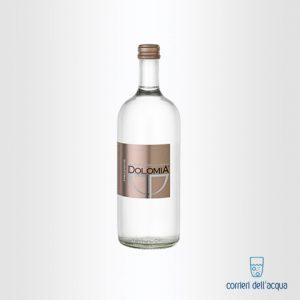 Acqua Frizzante Dolomia 05 Litri Bottiglia di Vetro Exclusive