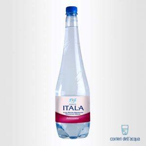 Acqua Frizzante Fonte Itala 1 Litro Bottiglia di Plastica PET