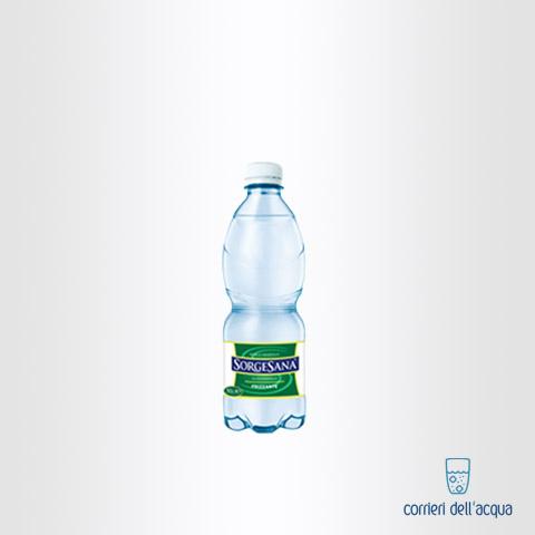 Acqua Frizzante Sorgesana 0,5 Litro Bottiglia di Plastica PET