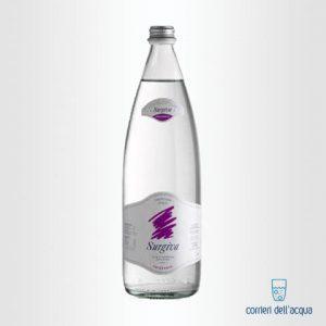 Acqua Frizzante Surgiva 1 Litro Bottiglia di Vetro