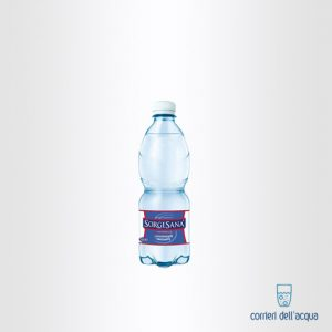 Acqua Leggermente Frizzante Sorgesana 05 Litro Bottiglia di Plastica PET