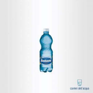 Acqua Lievemente Frizzante Gaudianello Festosa 05 Litri Bottiglia di Plastica PET