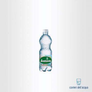 Acqua Lievemente Frizzante Gaudianello Monticchio 05 Litri Bottiglia di Plastica PET