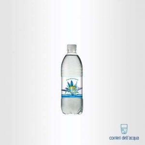 Acqua Naturale Ninfa Leggera 0,5 Litri Bottiglia di Plastica PET